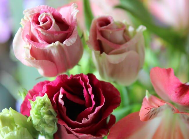 bloomon-bos-boeket-review-10