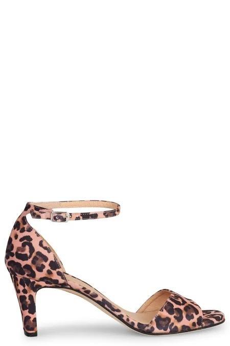 unisa-leopard