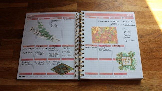 mascha-planner-indeling