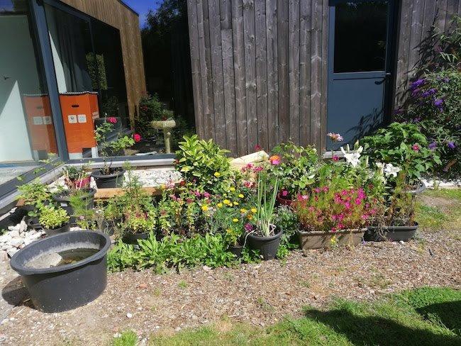 onze-tuin