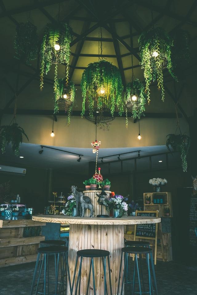hangplanten-interieur